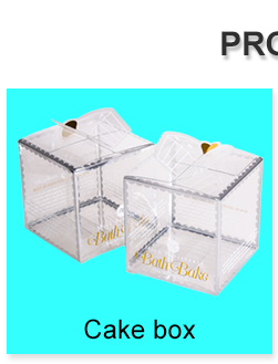 High Quality Transparent Cake Box 3